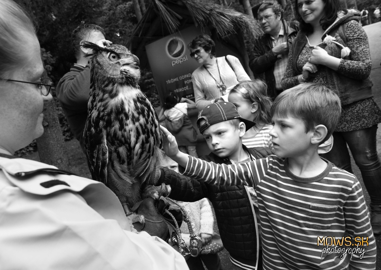 Dotkni sa vtáka